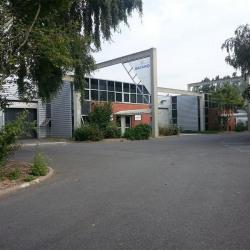 Location Local d'activités Saint-Thibault-des-Vignes 1514 m²