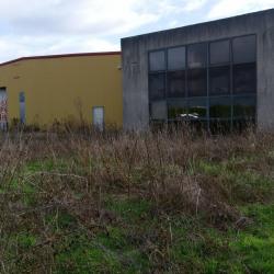 Vente Local commercial Genas 336 m²
