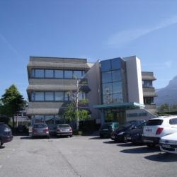 Location Bureau Annecy-le-Vieux 102 m²