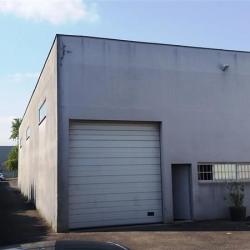 Location Local d'activités Champigny-sur-Marne (94500)