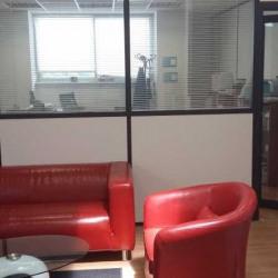 Vente Bureau Chilly-Mazarin 168 m²