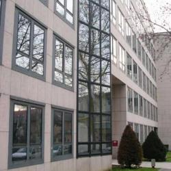 Location Bureau Lyon 3ème 323 m²