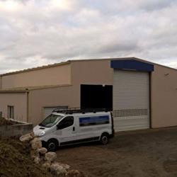 Vente Local d'activités Rouffiac-Tolosan 530 m²