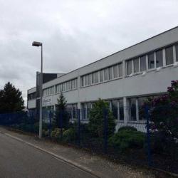 Location Entrepôt Erstein 898 m²