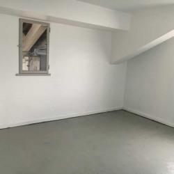 Location Local d'activités Argenteuil 491 m²