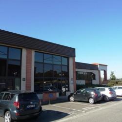 Location Bureau Balma 1147 m²