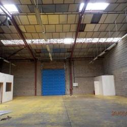 Vente Local commercial Saint-Barthélemy-d'Anjou 6607 m²