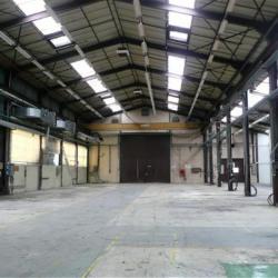 Location Local d'activités Saint-Étienne-de-Saint-Geoirs 1100 m²