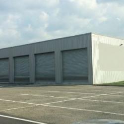 Location Local d'activités Anse 240 m²