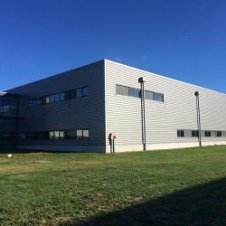 Location Local d'activités Saint-Priest 1700 m²