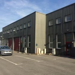 Location Local d'activités Gennevilliers 250 m²