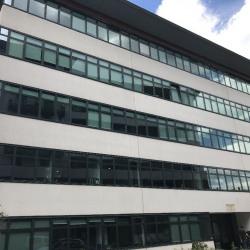 Location Bureau Tassin-la-Demi-Lune 198 m²