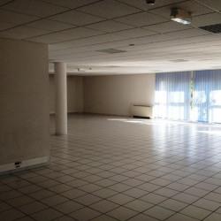 Location Bureau Chatte 760 m²