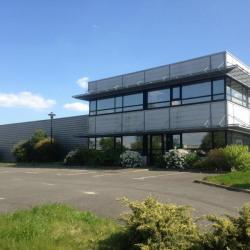 Location Entrepôt Pacé 570 m²