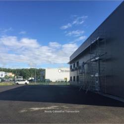 Location Local d'activités Castanet-Tolosan 550 m²