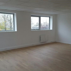 Location Local d'activités Chilly-Mazarin 379 m²