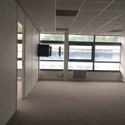 Location Bureau Croissy-Beaubourg 250 m²