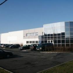 Vente Local d'activités Combs-la-Ville 3926 m²