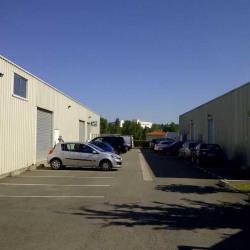 Location Local d'activités Montrabé (31850)