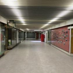 Vente Local d'activités Fresnes 5400 m²