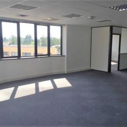 Location Bureau Saint-Didier-au-Mont-d'Or 285 m²