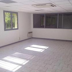 Location Local d'activités Émerainville 1180 m²