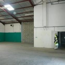 Location Local d'activités / Entrepôt Craponne