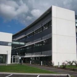 Location Bureau Schiltigheim 50 m²