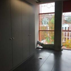 Location Bureau Lyon 2ème 358,3 m²