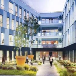 Location Bureau Lyon 7ème 6889 m²