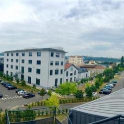 Location Bureau Lyon 9ème 125 m²