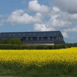 Location Entrepôt Vergetot 600 m²