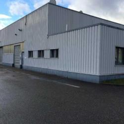 Location Local d'activités Colmar 1065 m²