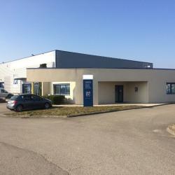 Vente Local d'activités Saint-Georges-d'Espéranche 1320 m²