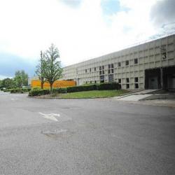 Vente Local d'activités Croissy-Beaubourg (77183)