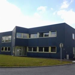 Vente Bureau Trun 500 m²