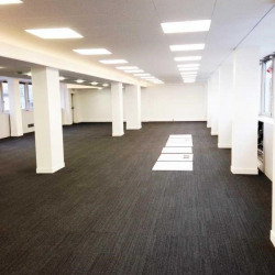 Location Bureau Paris 8ème 386 m²
