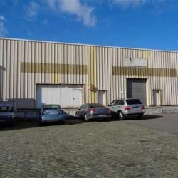 Vente Entrepôt Le Thillay (95500)
