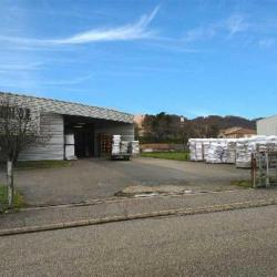 Vente Local d'activités Miribel 2069 m²