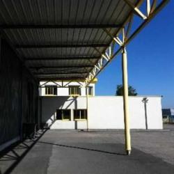 Location Local d'activités Reyrieux 587 m²