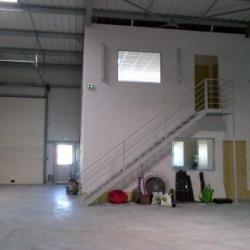 Location Local d'activités Saint-Jean-le-Blanc 350 m²