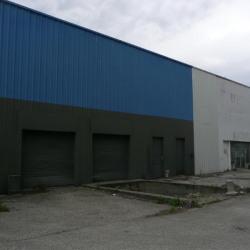 Vente Local d'activités Saint-Martin-d'Hères 2715 m²