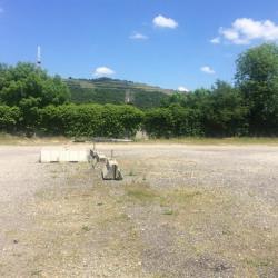 Location Local d'activités Saint-Romain-en-Gal 700 m²
