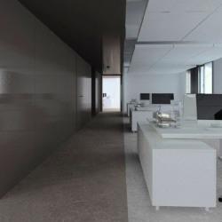 Location Bureau Paris 17ème 3053 m²