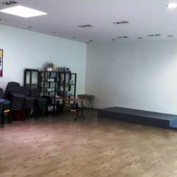 Location Bureau Le Blanc-Mesnil 307 m²