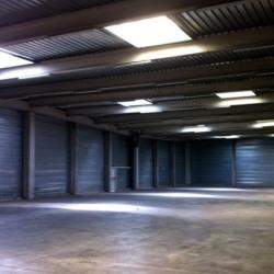 Location Local d'activités Toulouse 3212 m²