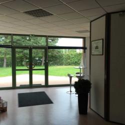 Vente Local d'activités Fleurines 750 m²
