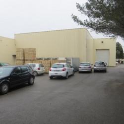 Vente Local d'activités Saint-Jean-de-Védas 3841 m²