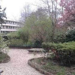 Vente Bureau Sceaux 274 m²