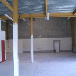 Location Entrepôt Ris-Orangis 1399 m²